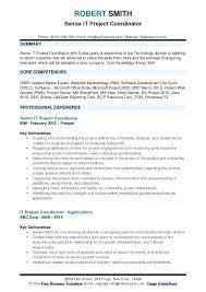 Project Coordinator Resume Samples Import Coordinator Resume Sample