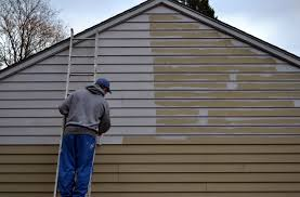 photos of aluminum siding can you paint