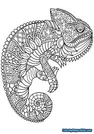 Coloring Pages For Kids Free Coloring Pages Animals Printable Free