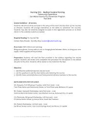Internal Auditor Resume Objective Internal Auditor Resume Objective Yun100 Co Night Hotel Job 38