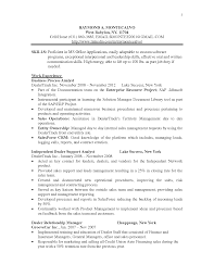 Business Support Analyst Resume Sales Support Lewesmr