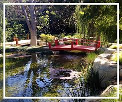 Small Picture Residential Ponds Los Angeles Backyard Waterfall Designs Pasadena