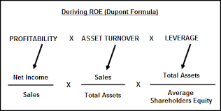 Dupont Chart Definition Return On Equity Roe Profitability Ratio