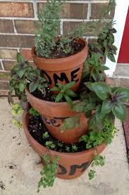 basil oregano lavender and parsley in herb container garden