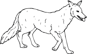 Free Printable Wolf Coloring Pages For Kids