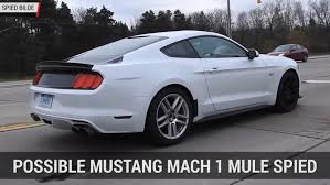 2018 ford gt350r. contemporary ford ford mustang mach 1 mule spied  autoblog mintue in 2018 ford gt350r