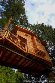treehouse masters spa. Charlies_treehouse_platform Treehouse Masters Spa