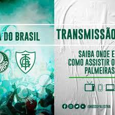 Palmeiras x América-MG: saiba como assistir ao duelo semifinal