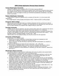 Unique College Essay Ideas Fifth Business Essays Example Of A Thesis Statement For An
