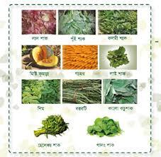 Balanced Diet Chart In Bangladesh Maternal Nutrition Poster Bangla Spring