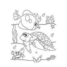 Small Picture Coloring Pages Under The Sea Coloring Pages Of Sea Animals To