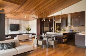 highlight lighting. Designs Ideas:Minimalist Home With Modern Kitchen And Living Room Plus Track Lighting Highlight