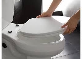 best toilet seat cover. best-toilet-seat-quick-removal best toilet seat cover