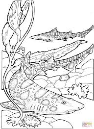 Small Picture Leopard Sharks coloring page Free Printable Coloring Pages