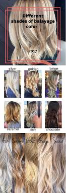 Examples Of Shades Of Balayage Color