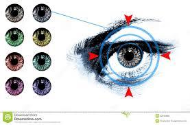 Eye Lens Shade Chart Stock Photo Image Of White