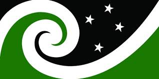 Best Of Flags Worst Of Flags Rnz News