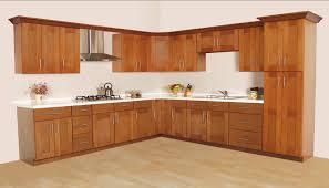 Furniture Appliances Stylish Restaining Oak Cabinets Design For
