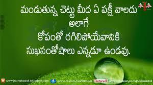 సతషల నలయ కప లకపవడ Telugu Manchi