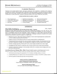 Resume Templates: Free Downloadable Resume Templates Free ...