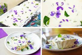 food background with gelatin cream with vegetable and edible flowers stock image image of
