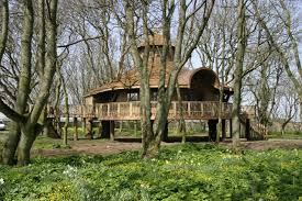 27 Best Tree Houses Images On Pinterest  Architecture Awesome Treehouse Scotland