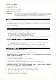 Professional Resume Writers Near Me Professional Resume Service 2