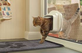 cat flap installation in glass door
