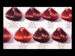 Different Shades Of Red Hair Color Chart Find Your Perfect