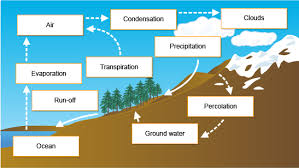 bbc   gcse bitesize  the hydrological cyclediagram showing the key stages in the hydrological cycle