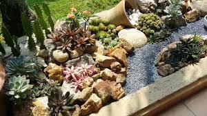 natural look of my succulents rock garden