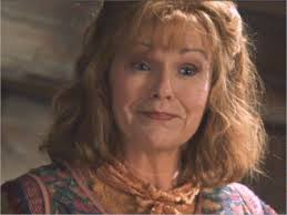 harry potter and the chamber of secrets julie walters