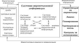 Курсовая работа Анализ рынка и рыночной конъюнктуры Система маркетинговой информации для анализа рынка
