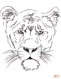 Small Picture Lioness Head coloring page Free Printable Coloring Pages
