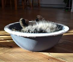 HEPPER NEST CAT BED Keep Fur f Your Couch Bed and Furniture