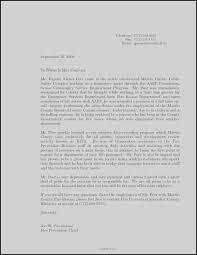 Letter Of Recommendation Peer Aldridgeparishchurch Org