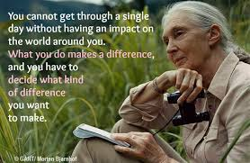 These Jane Goodall Quotes Will Inspire You To Save The World Amazing Jane Goodall Quotes