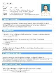 It Professional Resume It Professional Resume Example Sales Manager
