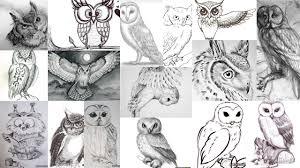 значение тату сова клуб татуировки фото тату значения эскизы