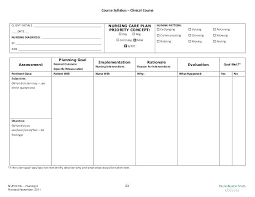 Care Plan Template Free Download Aconcept Co