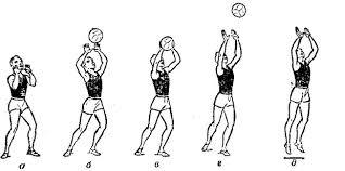 Прием и передача мяча в волейболе Прием мяча сверху