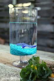 building an indoor water garden