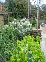 David Burke Kitchen Garden Botanic Garden Permaculture In Public Gardens