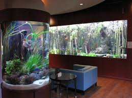 Cool Aquariums For Sale Fish Tank Chic With Unique Also Fish And Tank Besides 10 Cool Fish