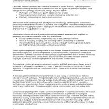 Professional Summary Examples Resume Sample Of Cover Letter For