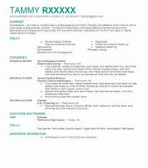 Resumes By Tammy Interesting Clothing ProcessorCashier Resume Example Planet Aid Baltimore