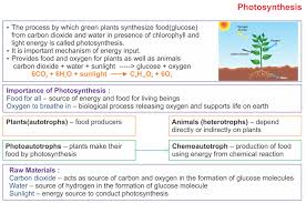 Photosynthesis Alphabet Chart Icse Solutions For Class 10 Biology Photosynthesis A