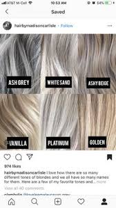 28 Albums Of Highlight Gray Hair Color Chart Explore