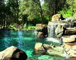natural looking in ground pools. Natural Swimming Pools Ideas To Create A Cooling Summer Natural Looking In Ground Pools L