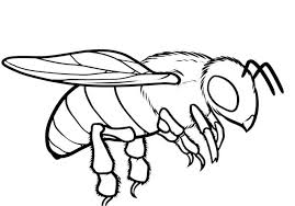 Small Picture bee coloring page